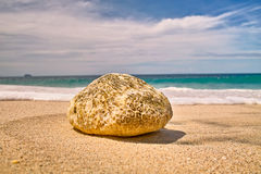 Stone on the Beach. Macro wave foam covering smooth stone or pebble on beach Royalty Free Stock Photo