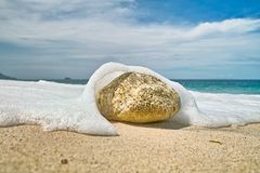 Stone on the Beach Royalty Free Stock Photos