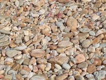 Stone. Beach background nature seaside stock photography