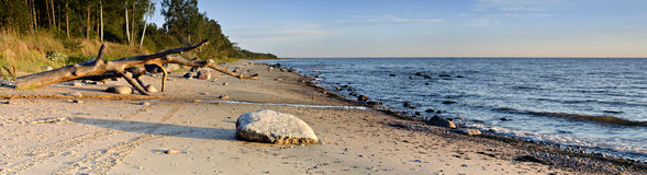 Stone beach at the Baltic Sea Royalty Free Stock Photo