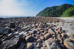 Stone on the beach Royalty Free Stock Image