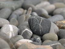 Boulder. The stone on the beach of the black sea Stock Photo