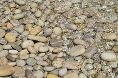 Stone Beach Stock Image