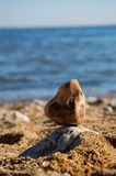 Stone on beach. A single stone balanced on a rock on the beach Stock Images