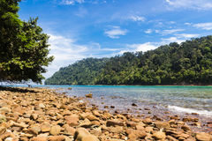 Stone beach on a tropical island Royalty Free Stock Images
