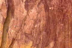 Stone became wood. From Thailand Royalty Free Stock Images