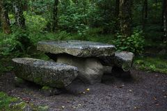 Stone bench. In the forrest Royalty Free Stock Images