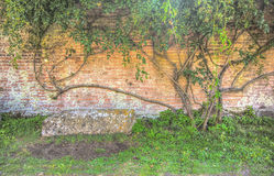 Stone bench and Old Brick Wall Stock Image