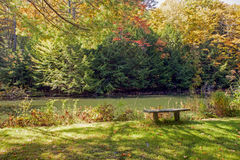 Stone Bench Beside a Small Pond Royalty Free Stock Photography