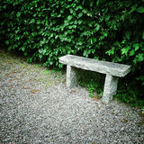 Stone bench in summer garden Royalty Free Stock Image