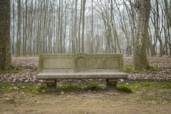 Stone bench on a winter park Royalty Free Stock Photo