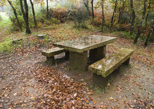 Stone benche and table. In the forest Stock Photo