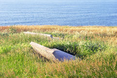 Stone benches surrounding with long grass near sea Royalty Free Stock Photography