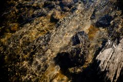 Stone beneath serene river water. River water waves brushing through the stones fresh water stream in mountain brook, close up stock photography