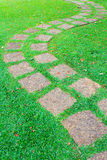 The Stone block pathway in the backyard Royalty Free Stock Photo