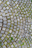 Stone block paving Stock Images