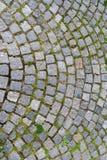 Stone block paving Stock Images
