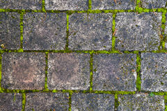 Stone block walk path background Royalty Free Stock Photos