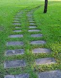 The Stone block walk path in garden Stock Photography