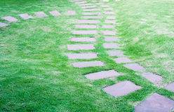 Stone block walk path in the garden with grass Royalty Free Stock Photos
