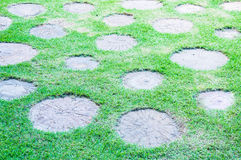 Stone block walk path in the garden with grass Stock Photos
