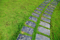 The Stone block walk path grass Stock Images