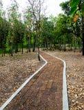 Stone block walk path Royalty Free Stock Image