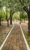 Stone block walk path Royalty Free Stock Photography