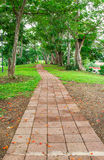 Stone block walk path in the park Royalty Free Stock Photos