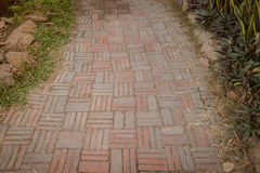 Stone block walk path in the park Royalty Free Stock Image