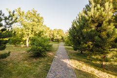 The Stone block walk path in the park with green grass background. The Stone block walk path in the park with green grass background stock images