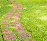 The Stone block walk path in the park with green grass Royalty Free Stock Image