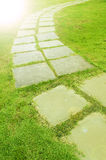 The Stone block walk path in the park Royalty Free Stock Images