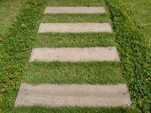 Stone block walk way in garden with green grass Royalty Free Stock Photos