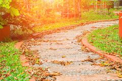 Stone block walkway path in the park dry leaf drop in autumn royalty free stock photos