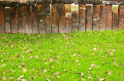 Stone block wall with grass Royalty Free Stock Photo