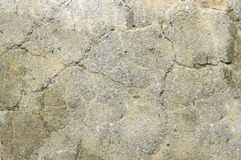 Stone board Stock Images