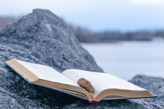 Stone on a Book Royalty Free Stock Images