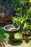 Stone bowl with water and flowers Royalty Free Stock Photography