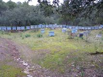Stone boxes in the forest. With numbers Stock Photos