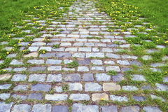 Stone brick road Stock Photography