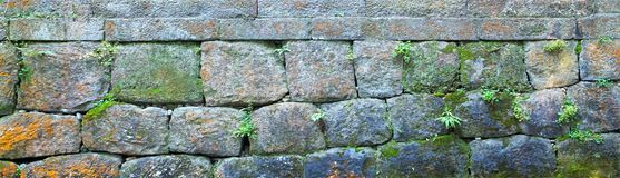 Stone Brick Wall Banner, Panorama. Stone brick wall background with a banner, panorama, or panoramic orientation. Plants and moss add to the colors and patina of Stock Photos