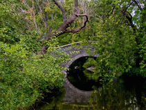 Free Stone Bridge Royalty Free Stock Images - 20540729