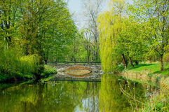 Stone bridge across the lake in a park in spring Stock Photography