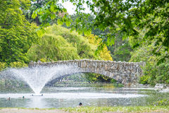 Stone bridge across pond with water fountain in park Stock Image