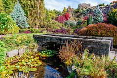 Stone bridge across the river in a botanical garden with a varie. Ty of plants, colorful trees and bushes, clear water and green leaves of water lilies Royalty Free Stock Photography