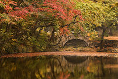 Stone bridge in Autumn. Beautiful red a n yellow trees in Autumn next to a calm river and old stone bridge Stock Photo