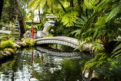 Stone Bridge in a Beautiful Garden at Monte above Funchal Madeira. This wonderful garden is at the top of the cablecar from the seafront in Funchal. It is filled Royalty Free Stock Photo