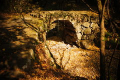Stone bridge with fallen leaves. In the tianmu mountain Royalty Free Stock Photo