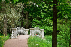 Stone bridge in the forest near Saint Petersburg Stock Image